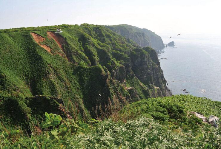 天売島 観音岬展望台 写真提供:羽幌町観光協会