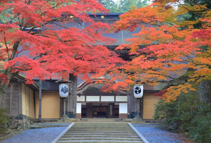 高野山 金剛峯寺(写真提供:公益社団法人 和歌山県観光連盟)